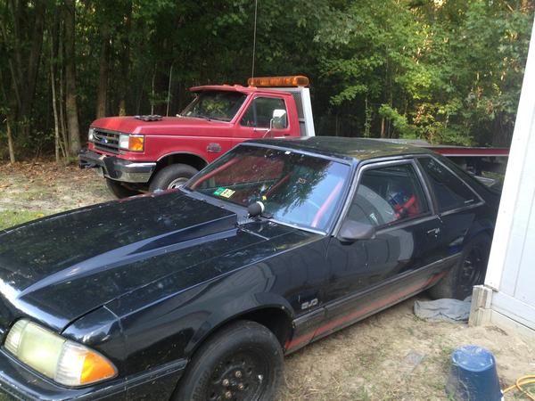 1991 Mustang